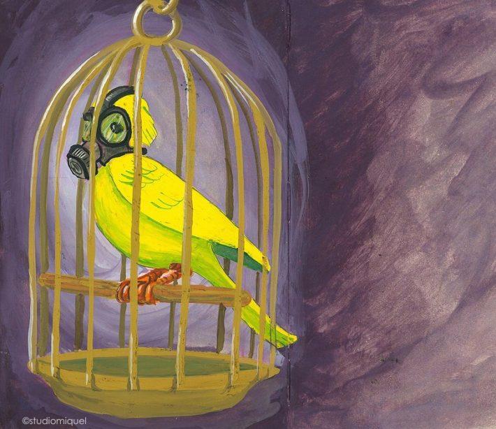Kanarienvogel 710x614